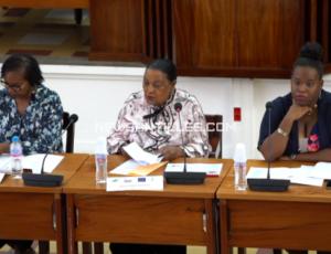 Séminaire clauses sociales Guadeloupe